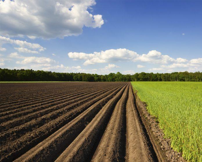 Переоформление земельного пая - Мочь закона