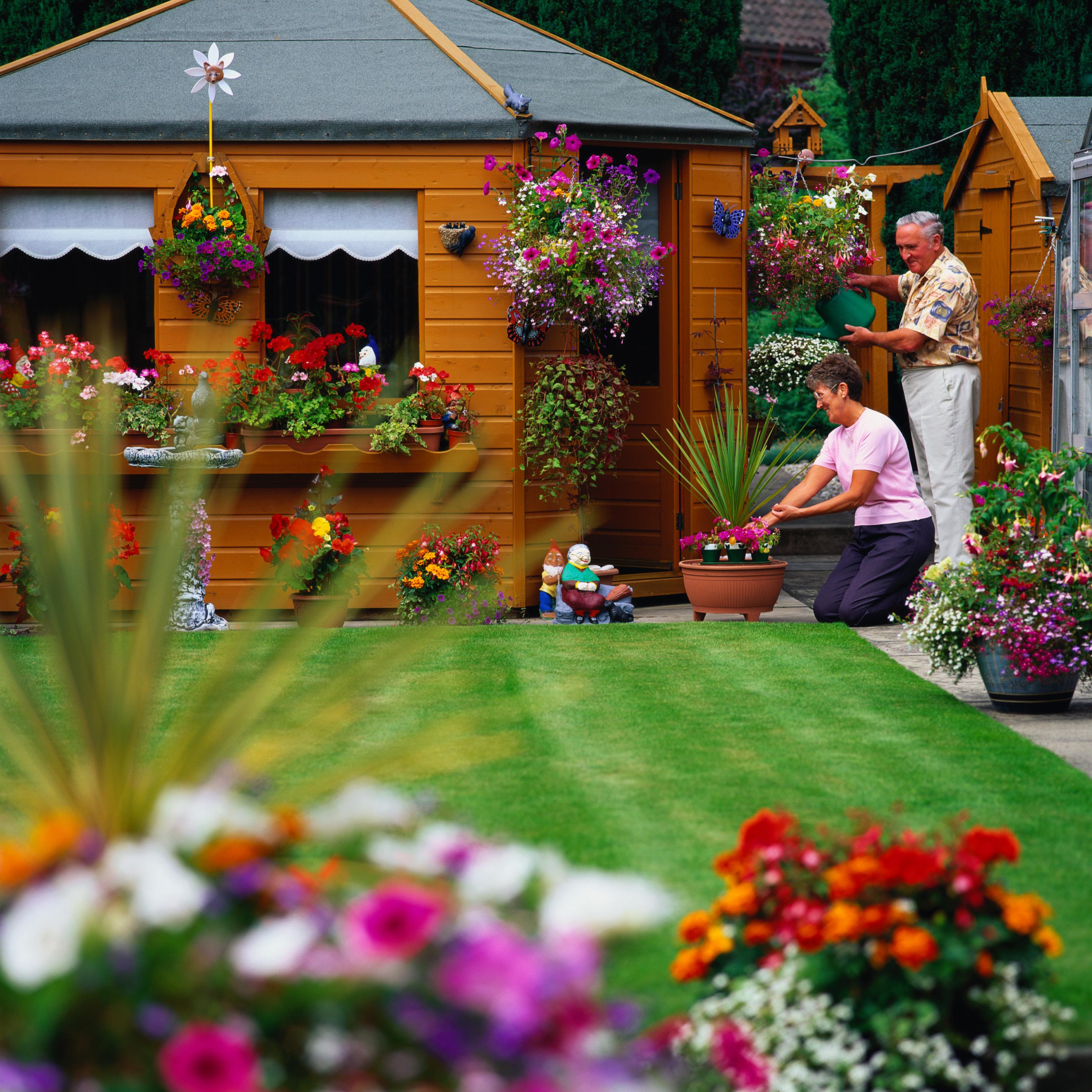 Мой прекрасный сад своими руками ландшафтные хитрости - 20 фотографий 24